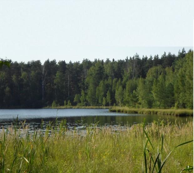Геологические изыскания. Чеховский район