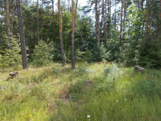 Геологические изыскания в Шаховская и Шаховском районе Московской области